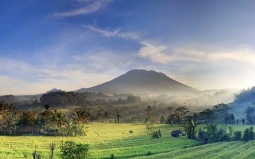 Indonesia, Bali, rice fields and Agung Volcano