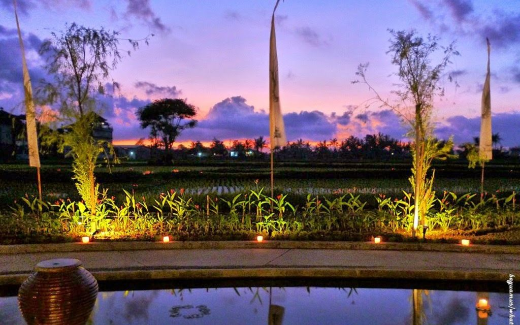 Bali Travel Agent The Advantages And Disadvantages