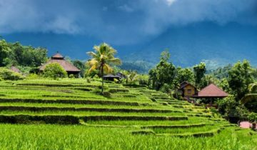 Bali Travel Agent: The Advantages and Disadvantages